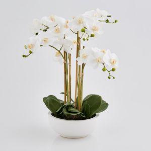 Orkidé m/potte - 64 cm - Hvit